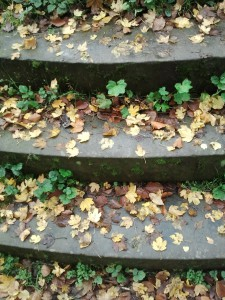 stairs-333198_1280